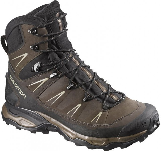 Salomon X Ultra Trek GTX 378386 40,6